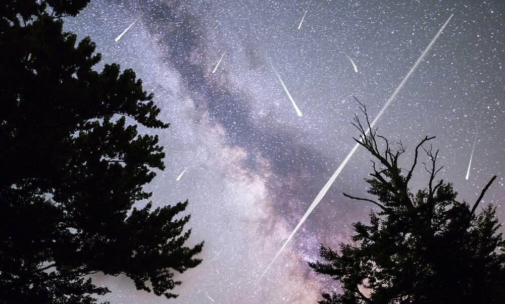 Perseids meteor shower to light up Germany's night sky next week
