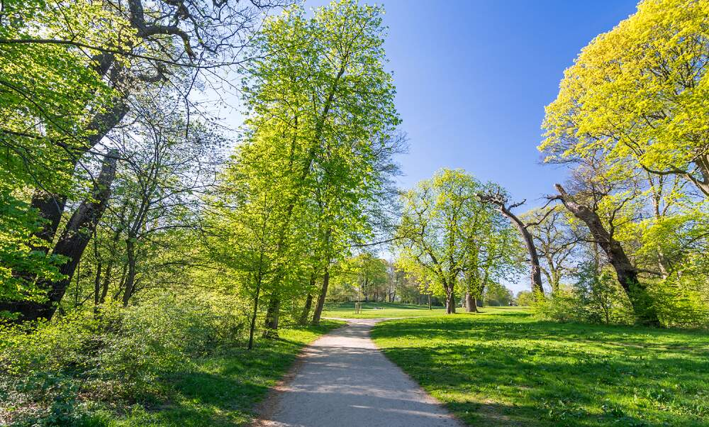 Sunny skies and up to 25 degrees this week in Germany