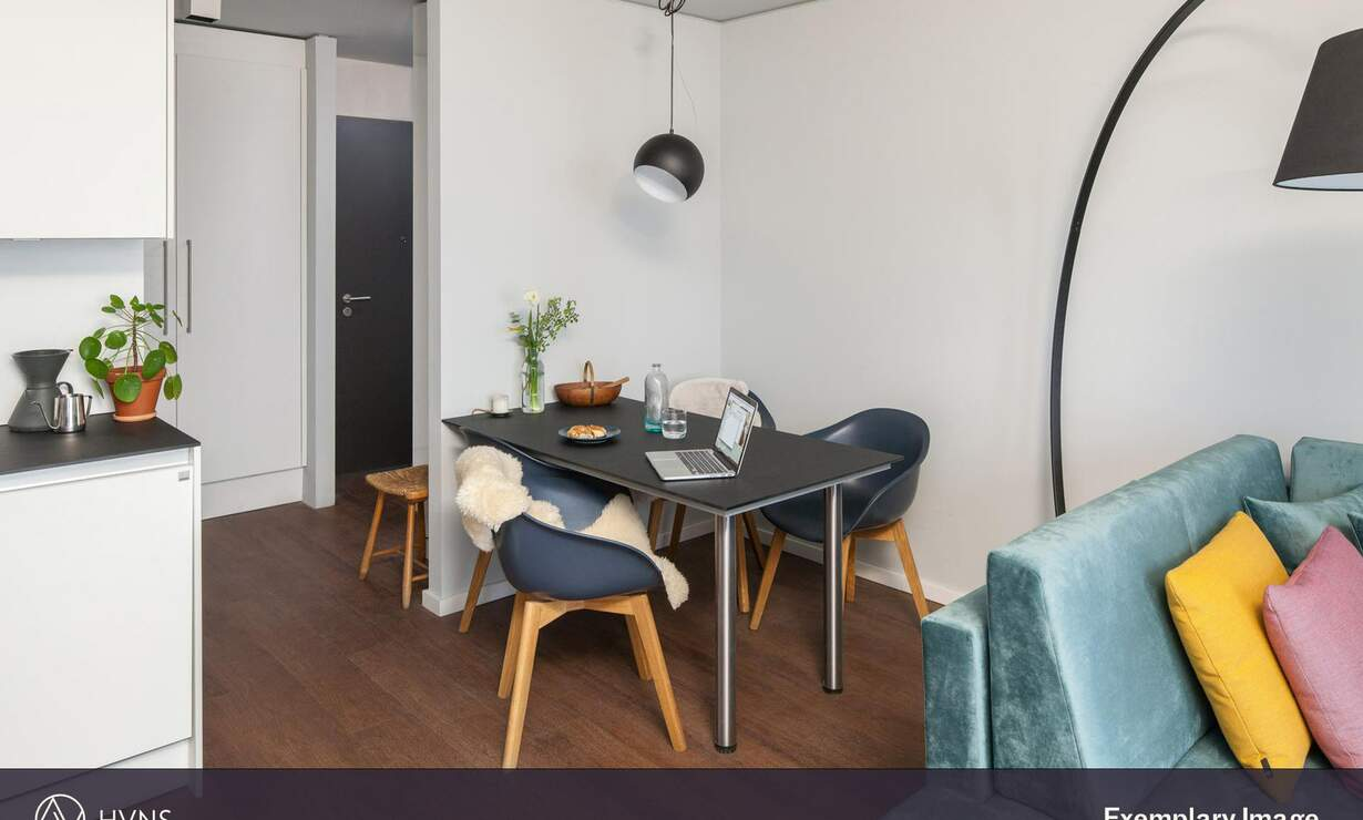 *HVNS* Modern and fully furnished Studio, Gym, Concierge, Co-Working Space - Upload photos 7
