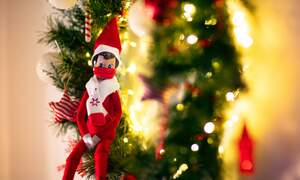 42 percent of people in Germany might break rules over Christmas