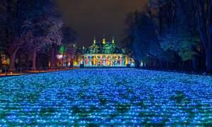 Dresden's Magical Christmas Garden
