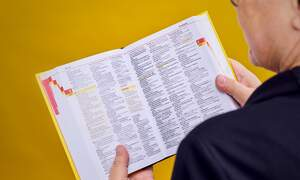 These German words were added to the dictionary in 2020