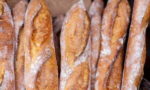 [Video] Germans go fishing for favourite baguettes at French border