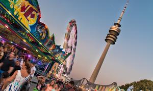 Impark Summer Festival