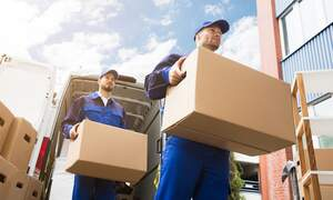 Moving services & companies