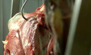 Germany cracks down on meat industry after coronavirus outbreaks