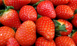 Thieves steal entire field of strawberries in south Germany
