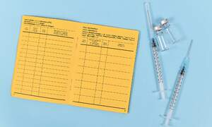 """What you need to know about Germany's """"Impfpass"""" vaccination record"""