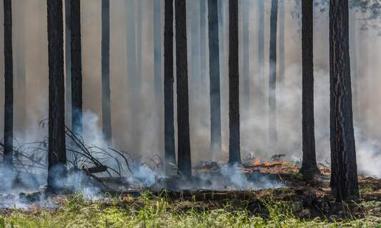 1000 evacuated as wildfire rages in northern Germany