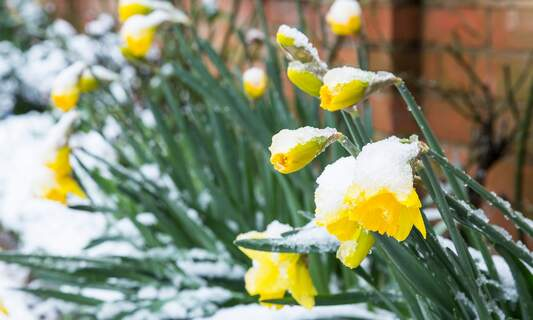 Chance of snow: Another cold snap heading to Germany this weekend