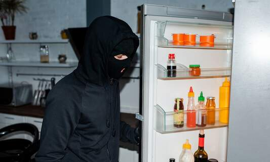 Half-eaten sausage helps German police close 2012 burglary case
