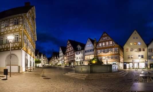 Court overturns curfew in Baden-Württemberg