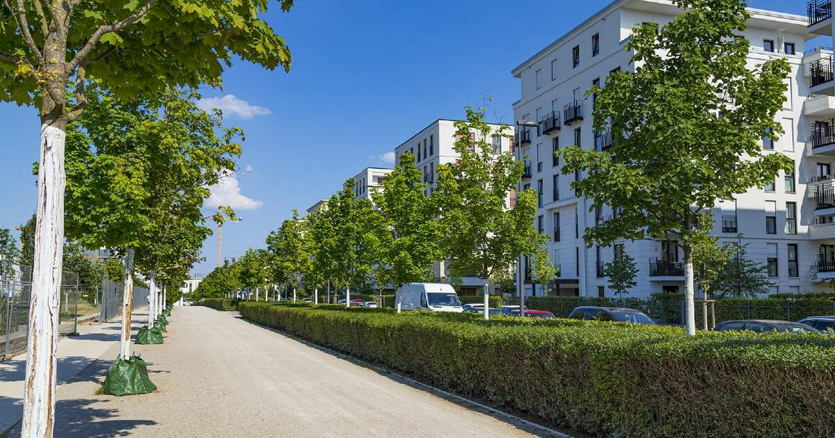 Rent prices in some major German cities have started to fall