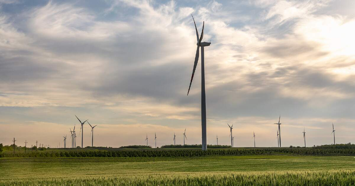 Germany's green energy surcharge to go down next year